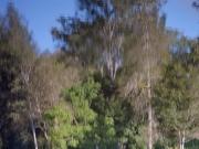 http://www.janinebaechle.com/files/gimgs/th-24_Verzerrtes-Bild2.jpg