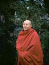 http://www.janinebaechle.com/files/gimgs/th-34_04g-Zong-Rinpoche-111,8.jpg